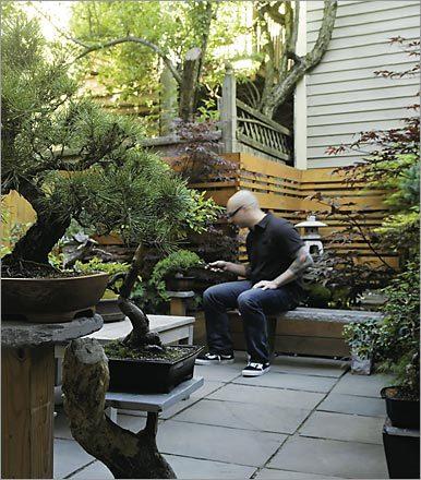 Japanese garden for Japanese themed garden