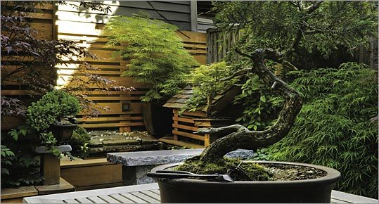 Backyard chinese gardens on pinterest japanese gardens zen gardens and chinese garden - Japanese garden design ideas for your home garden ...
