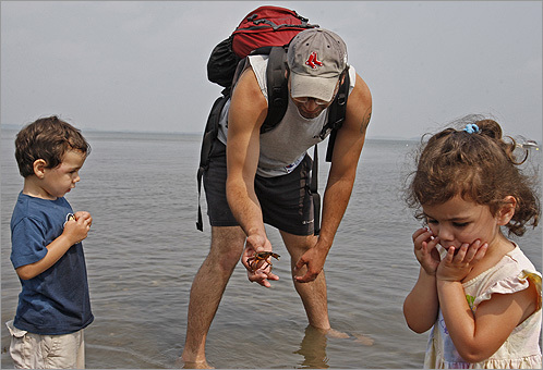 Scott Kabay of Quincy showed his son, Jack, 3, a crab as his twin sister, Sarah, couldn't bear to look during low tide in Houghs Neck on Sunday.