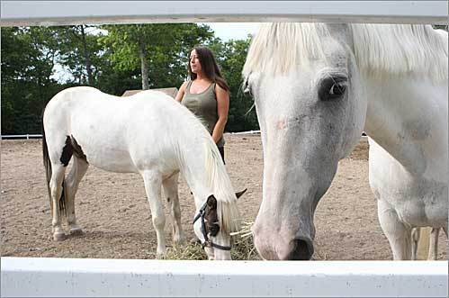 Sarah Nagle with her horses Scout (left) and Starlight in Plymouth. Nagle, owner of Cedar Oaks Equestrian Rescue in Plymouth, said she works seven days a week to pay for her 15 foster horses, which cost $6,000 each month.