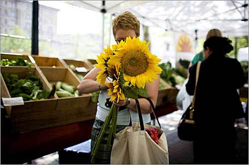 Della Green of Quincy shopped for sunflowers at the Siena Farms stand during the Copley Square Farmer's Market in Boston.