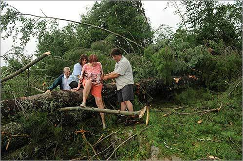 Neighbors Sonja Rogers, in the blue T-shirt, and her husband, Tim Rogers, helped Gail and Walter Read navigate their way through fallen trees after a tornado hit their Deerfield, N.H., neighborhood.