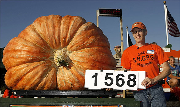 Steve Connolly, from Sharon, Mass., poses with his 1,568-pound pumpkin.