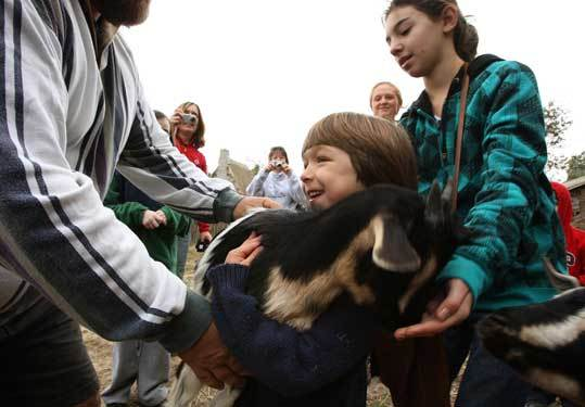 Jake Dagesse carries a goat at Plimoth Plantation with help from Arianna Wolff (right), a volunteer for the program.