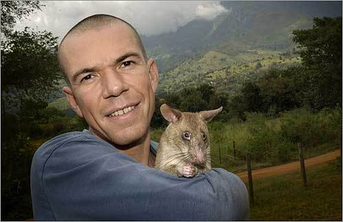 Weetjens in Tanzania with one of his trained rats.