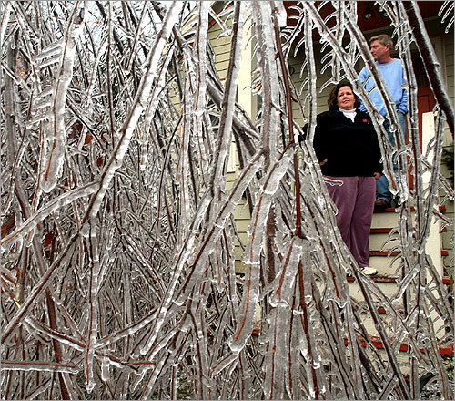 In a Worcester neighborhood, Eileen Smith stood on the porch of her neighbor, Dave Maas, looking at an ice-encrusted tree that fell on his property.