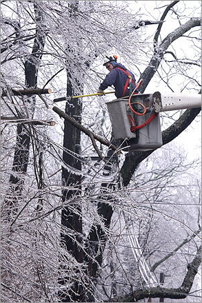 Casey Daniels of Stanley Tree Service cut branches over power lines on Osgood Street in North Andover.
