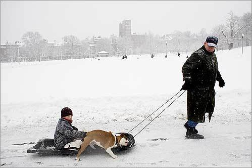 Beacon Hill resident Giles McNamee pulled his son Webb, 10, and their dog Olivia around Boston Common as another snowstorm came through Boston on Sunday.
