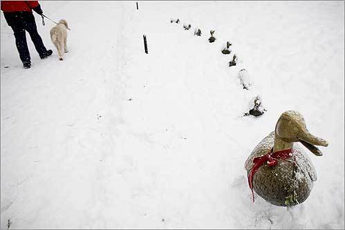 The bronze 'Make Way for Ducklings' statuettes in Boston Common collected snow Sunday.
