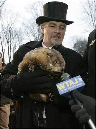 How many 'Phils' have there been over the years? Just one, and he's been making predictions for over 120 years, according to the Punxsutawney Groundhog Club's website.