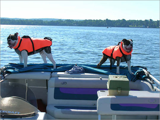 Seamus and Emma enjoying a boat ride on Lake Champlain in Vermont.