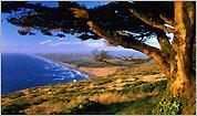 Coastal meandering
