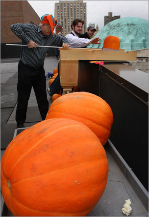 For the fifth consecutive year Friday, students at Boston University's physics department sent pumpkins hurtling to their makers with a 70-foot drop onto Metcalfe Plaza along Commonwealth Avenue.