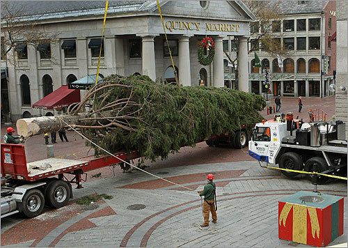 Christmas tree set up in Faneuil Hall Boston - Boston.com