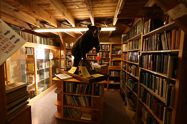 HUGELY ANTIQUARIAN Looking for ... a starter cannon? A cast iron pot? A handmade quilt? For many years, 55,000 broiler chickens were raised in the Big Chicken Barn at the edge of Ellsworth, Maine. Now owners claim it houses one of New England's largest collections of antiquarian books and antiques. In more than 21,000 square feet is surely something for every shopping list. On the ground floor, 52 antiques dealers display their wares: pottery, prints, paintings, gold and silver jewelry, wood stoves, skillets, old military paraphernalia, needlework, furniture, dishes, rugs, linens, lamps, vintage clothing, vinyl records, tools, toys, clocks, crocks, porcelain, pewter, and more. Upstairs, visitors will find about 150,000 old, used, or rare books at prices ranging from 50 cents to a few thousand dollars, and more than 20,000 magazines. A lounge called The Coop offers complimentary coffee; campers and RVs can park overnight for free. As a holiday bonus, everything in the barn will be 20 percent off in December. 1768 Bucksport Road (US Routes 1 and 3), 207-667-7308, www.bigchickenbarn.com JUDITH GAINES