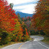 White Mountains Trail foliage GPS tour