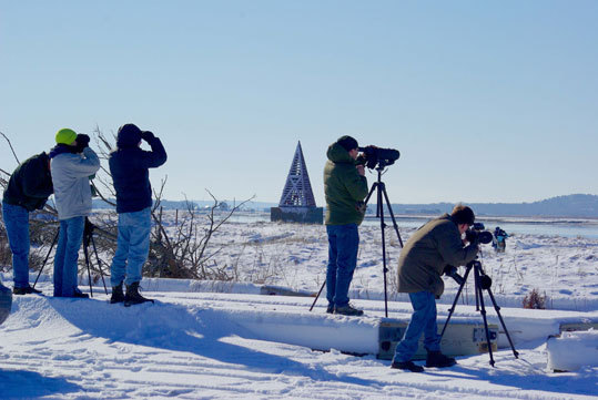 All is quiet for some birders at Salisbury Beach State Reservation, across the Merrimack from Joppa Flats.