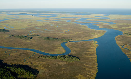 The private islands of Georgia, including Eagle Island (bottom, middle) alongside the Darien River. Sapelo Island and the Atlantic Ocean are in the distance. Georgia's backwaters are a brackish mix of saltwater and fresh, rich in the nutrients of a great fishery. In May schools of 60 to 100 redfish start cruising the mud banks.
