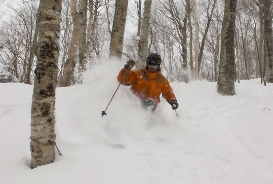 Cannon Mountain received some 40 inches.