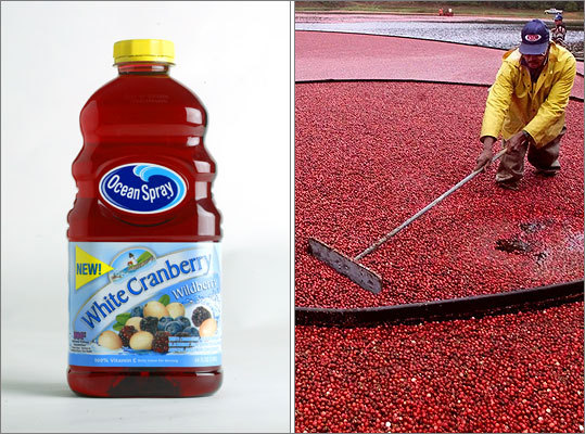 Ocean Spray Cranberries Started by three cranberry growers in 1930, Ocean Spray Cranberries now has about 600 grower families across North America and is still based in Lakeville. Ever since its inception, Ocean Spray has been coming out with new products, such as jellied cranberry sauce, the cranberry juice, cocktail craisins, sweetened dried cranberries, and even sugar-free drink mixes.