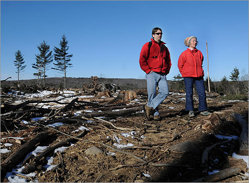 During the past five years, state foresters have been clear-cutting diseased and aging timber across Central and Western Massachusetts. But forestry officials acknowledged that they sometimes violate their own rules. The result: landscapes in areas such as October Mountain, Savoy State Forest, and Chester-Blandford State Forest have been dramatically altered, creating a public outcry. From left: Volunteers Chris Matera of Northampton and Claudia Hurley of Westfield stood among the tree stumps. Article: 'A clear-cut controversy' .