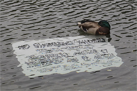 A sign under the water in the reflecting pool warns people not to swim or wade in the pool.