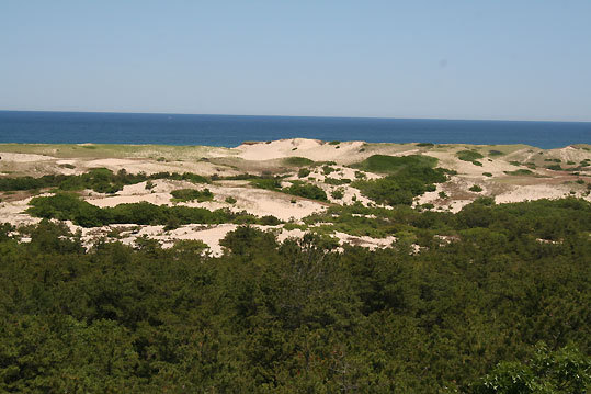 The observation desk at the Province Lands Visitor Center includes a sweeping view of Race Point Beach.