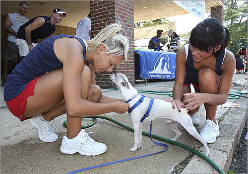 Speckles, a Chihuahua, got some attention from Ashley Baldwin, left, and Ali Sova .