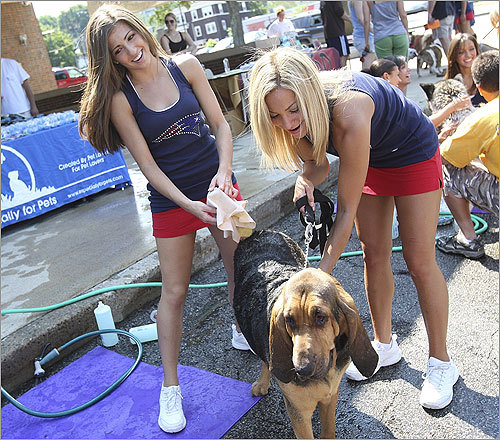 Heather Santoro, left, and Stephanie Sanchez cleaned up a bloodhound.