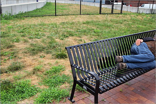 A grass park located between Mercantile and Clinton streets, and Cross and Surface streets, was left dying and unkempt.