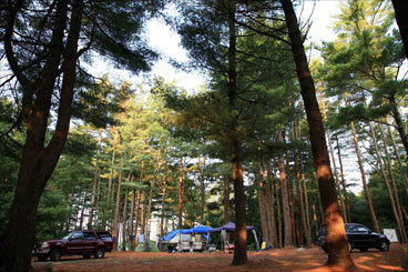 Big Burlingame State Park in Charlestown, R.I., has 750 campsites, 11 log cabins, and a yurt. The large forested park around Watchaug Pond, with swimming, paddling, a camp store, recreation hall, and nature programs, has a zero tolerance alcohol policy. ''It's nice to drive through and see young people and families on bicycles,'' says Wright. Close to South County beaches, there are hiking trails leading to the adjacent Kimball Wildlife Sanctuary. Busy here on holiday weekends.