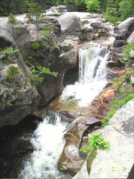 Western Maine's Grafton Notch State Park is a bit on the rugged side. An easy drive from Bethel village, the 3,000-acre park slices through a mountain pass in the Mahoosucs on winding Route 26 with options for nature walks, picnicking, and hikes. Screw Auger and Mother Walker Falls are beautiful. Stretch your legs on a short loop walk by a gorge to Moose Cave or hike to 4,000-plus-foot Old Speck. The Appalachian Trail meanders through the park.
