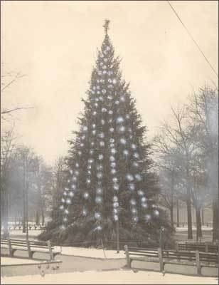 1931 The Common Christmas tree, which was then covered in blue lights, sits alone on Dec. 22, 1931.