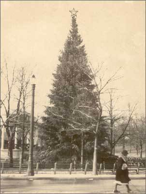1934 The Common Christmas tree on Dec. 21, 1934.