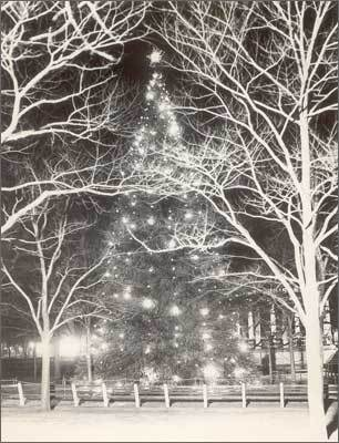 1935 The Common Christmas tree on Dec. 24, 1935.