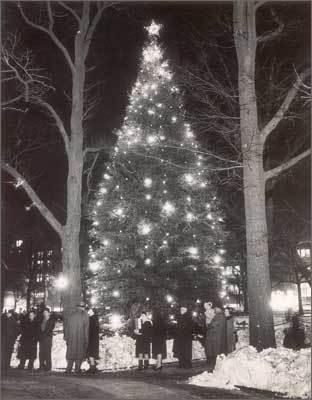 1945 The Common Christmas tree on Dec. 24, 1945.