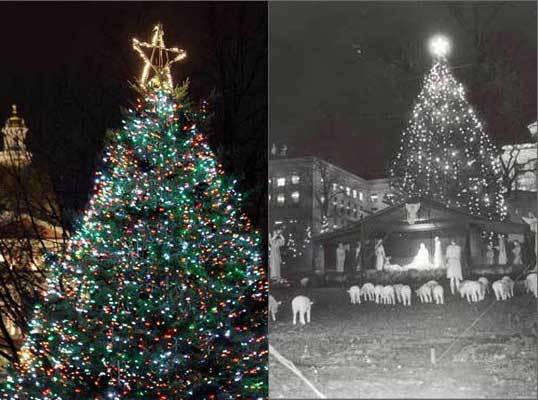 Pictured left are the Common's tree in 2008 and in 1968.