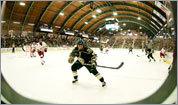 Local hockey barns