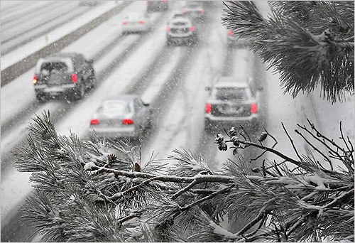 A snowy branch framed commuters on their way to work during the storm on the Massachusetts Turnpike eastbound on Tuesday.