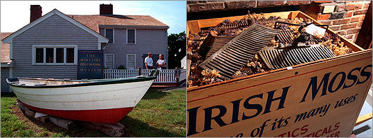 Scituate Irish population: 47.5% Irish mossing brought thousands of Irish immigrants to this coastal town. Today, the town boasts the most Irish population in the state and even has a 2.3 mile St. Patrick's Day parade to prove it. Margin of error: +/- 9.1%