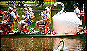 Swan Boats through the years