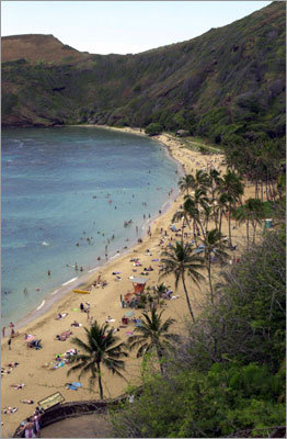 Honolulu Highlight: Hanauma Bay Nature Preserve