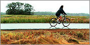 15 great bike rides