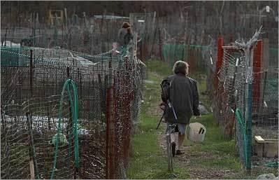 Tending garden nurtures sense of community, too