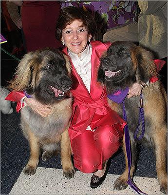 MSPCA-Angell's 5th Annual Animal Tales Gala