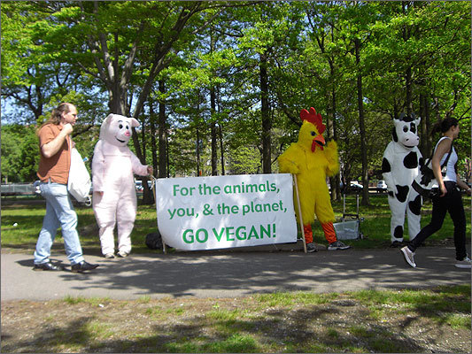 A pig, chicken, and a cow promoted a vegan diet, while others passed out fliers for The Massachusetts Animal Rights Coalition.