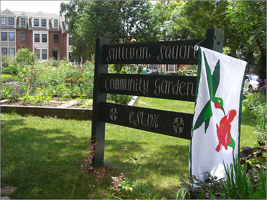 The Gardens for Charlestown's Community Garden was the first stop on the tour. The garden was established in 1978, when the city leased what was then a rubble-strewn lot to 20 Charlestown residents. In 1995, the city deeded the land to Gardens for Charlestown to recognize the group's commitment to urban gardening.