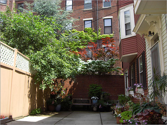 On Pleasant Street Court, the five families that share the space have turned their concrete yard into a container garden.