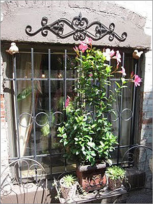 Montgomery Street: Beautiful pink flowers are planted just in front of the iron window gates.