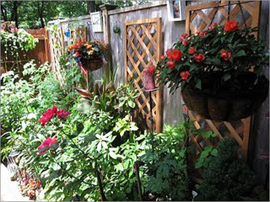 Clarendon Street: This garden of a private home is full of plants, flowers, and vegetables. The garden not only houses greenery, but the owners have decorated it with artwork.